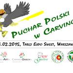Puchar Polski w Carvingu