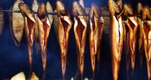 Warsztaty wędzenia ryb